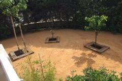 Plantation gros sujet